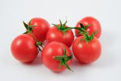 Six vine tomatoes (Solanum lycopersicum) Stock Photos