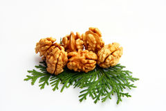 Six Walnuts with leaf isolated Stock Image