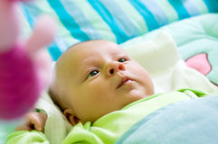 Six week baby serious look. Six week thoughtful baby with serious look Royalty Free Stock Images