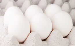 Six White Eggs On The Tray Stock Photo