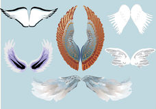 Six wing pairs Stock Images