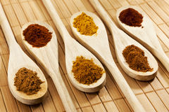 Six spices on wooden spoons Stock Photo