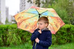 Six year old boy on a walk Stock Images