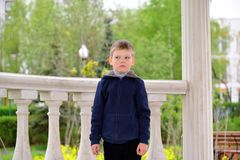 Six year old boy on a walk Stock Photography