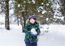 The six-year-old boy is in the wood. Snowfall. Around a pine. The kid holds snow in hand Stock Photography