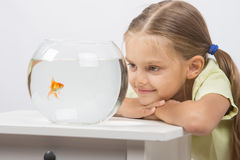 Six year old girl put her head on the handle and looks at a goldfish in an aquarium Royalty Free Stock Photo