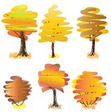 Six yellow  deciduous trees. Royalty Free Stock Photos