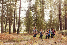 Six young adults running in a row through a forest stock photography