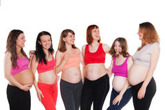 Six young happiness pregnant women, standing Stock Photography
