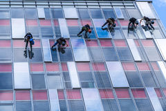 Six young men are cleaning windows. On high glassy building during one autumn day in europe royalty free stock image