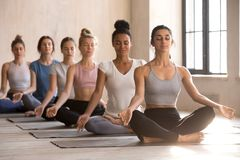Six young women meditate sitting in lotus posture royalty free stock photo