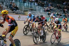Sixday cycling series finals in palma velodrome wide. The pack of Cyclists ride during their final resistance race at the Sixday cycling event finals in royalty free stock images