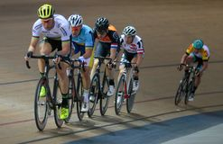Sixday cycling series finals in palma velodrome wide. The pack of Cyclists ride during their final resistance race at the Sixday cycling event finals in royalty free stock image