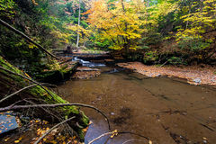 Sixmile Creek near Ithaca, NY. Clear water tumbles over the bedrock in the fall Royalty Free Stock Images