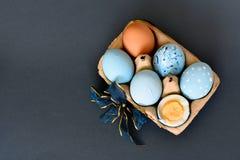 Sixpack av ljust - blåa kulöra påskägg fotografering för bildbyråer