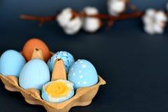 Sixpack de los huevos de Pascua coloreados azules claros con la rama del algodón en el fondo imagenes de archivo