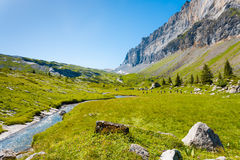 Sixt Fer A Cheval Alps France National Park H. Beautiful green grass valley at high elevation at Sixt Fer A Cheval National Park with view of Tete A L`Ane Royalty Free Stock Photo