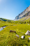 Sixt Fer A Cheval Alps France National Park V. Beautiful green grass valley at high altitude at Sixt Fer A Cheval National Park with view of Tete A L`Ane Stock Image