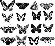 Sixteen black butterflies Stock Image