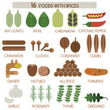 Sixteen foods with spices. Illustrator Stock Photos