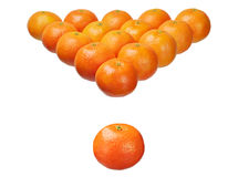 Sixteen mandarins Royalty Free Stock Photos