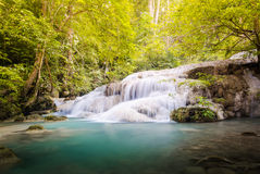 The sixth level of Erawan Fall Royalty Free Stock Image