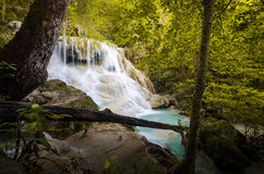 The sixth level of Erawan Fall Stock Images