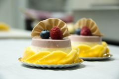 Size of mango panna cotta for appetisers. A size of mango panna cotta for appetisers Stock Image