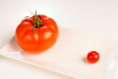 Size matters. Big vs. small tomato, a size matters concept royalty free stock photo