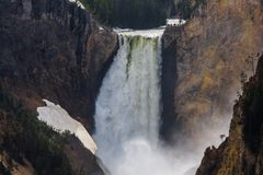 Yellowstone Lower Falls, Yellowstone National Park, Wyoming, USA royalty free stock images