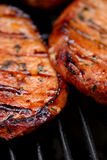 Sizzling hot meat. Fresh meat on the BBQ with perfect grillmarks stock image