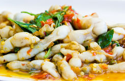 Sizzling spicy fried with Razor clam Stock Image