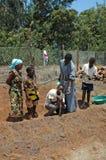 Själv-tåla projekt i den Pomerini byn i Tanzania - Afrika Royaltyfri Fotografi