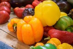 Självodlade organiska peppar och tomater arkivbild