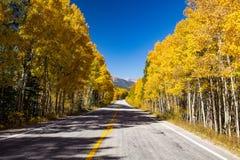 Självständighetpasserande, Colorado fotografering för bildbyråer