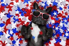 Självständighetsdagen 4th av den juli hunden Royaltyfri Bild