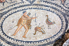 Sjätte Labour av Hercules, mosaik i Volubilis, Marocko Royaltyfria Bilder