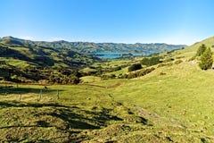 Sjö Akaroa, Nya Zeeland Arkivbild
