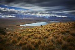 Sjö Alexandrina Nya Zeeland Fotografering för Bildbyråer