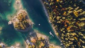 Sjö Autumn Forest SunnyMountains Above Caumasee Switzeland flyg- 4k lager videofilmer