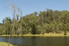 Sjö av D'anguilar nationalpark 2 Royaltyfri Fotografi