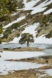 Is- sjö av den Madriu-Perafita-Claror dalen Royaltyfria Bilder