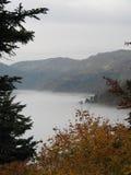 Sjö av dimma Arkivfoto