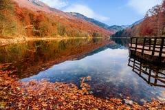 Sjö Biograd (den Biogradsko jezeroen), Biogradska Gora nationalpark Fotografering för Bildbyråer