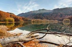 Sjö Biograd (den Biogradsko jezeroen), Biogradska Gora nationalpark royaltyfria bilder