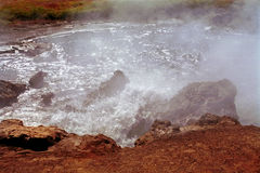 Sjö Bogoria, Kenya Royaltyfri Fotografi