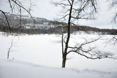 Sjö Bogstadvannet i Oslo i vinter Royaltyfria Foton