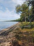 Sjö Cass på Chippewanationalskogen, Minnesota royaltyfri bild