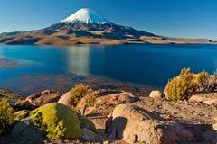 Sjö Chungara på den Parinacota nationalparken Royaltyfria Bilder