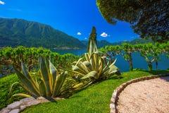 Sjö Como och alpina berg i den Lombardy regionen, Italien arkivfoto